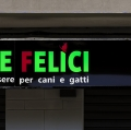 GiacomettiStefano_Tema-ColoriComplementari_01
