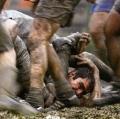 zanetti-mirko-rugby