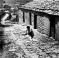 allaria-aperta-1969