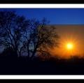 antonio-zimbone_il-paesaggio-nel-paesaggio-4