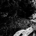 antuono-maria-angela_i-luoghi-delle-donne-5