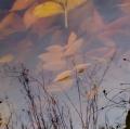foglie-di-mario-caramanna-26