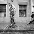 a10_citta-b-aires-caminito