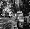 b6_villaggi-medanos-estancia
