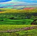 giuseppe-cannoni_il-colore-nel-paesaggio-15