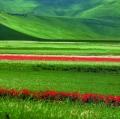 giuseppe-cannoni_il-colore-nel-paesaggio-17