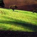 giuseppe-cannoni_il-colore-nel-paesaggio-18
