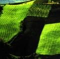 giuseppe-cannoni_il-colore-nel-paesaggio-19