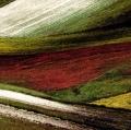 giuseppe-cannoni_il-colore-nel-paesaggio-21
