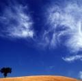 giuseppe-cannoni_il-colore-nel-paesaggio-27