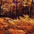 giuseppe-cannoni_il-colore-nel-paesaggio-33