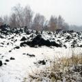 040_fiocchi-di-neve_anno-2001