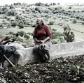 0025_nzuliddu-di-simone-aprile-e-giuseppe-la-rosa