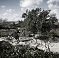 0033_nzuliddu-di-simone-aprile-e-giuseppe-la-rosa