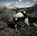 0034_nzuliddu-di-simone-aprile-e-giuseppe-la-rosa