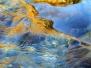 Riccardo Cocchi - E l'acqua si fece anima