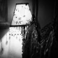 0017_foto-di-alberto-castro
