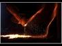 Visioni d'acciaio dal ws di Daniela Sidari