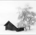gabi_nel-silenzio-invernale