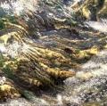 036_acqua-con-riflessi-di-luce-solare-cibachrome