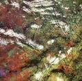 037_acqua-con-riflessi-di-luce-solare-cibachrome