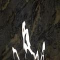 040_acqua-con-riflessi-di-luce-solare-cibachrome