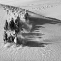 Agnesoni Mauro Run into the desert