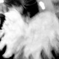 014_sabella-giuseppe_il-ritorno-di-icaro