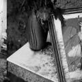 0011_vasta-serena_giampilieri-2012