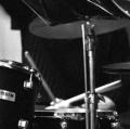 platania-pier-raffaele_-my-jazz-05