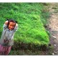 nepal005