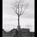 017_migliori_da-gente-del-delta-1958