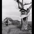 018_migliori_da-gente-del-delta-1958