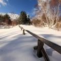 drago-alessio_inverno-003