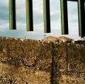sorbello-santo_paesaggio-urbano_1