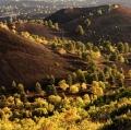 047_zimbone-autunno-4