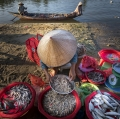 lello-fargione-vietnam