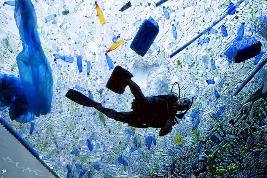 2018D4-A1-Marzio Filippo Minorello-Plastic Sea 02
